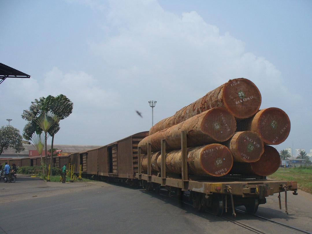 Afreican hardwood lumber for export