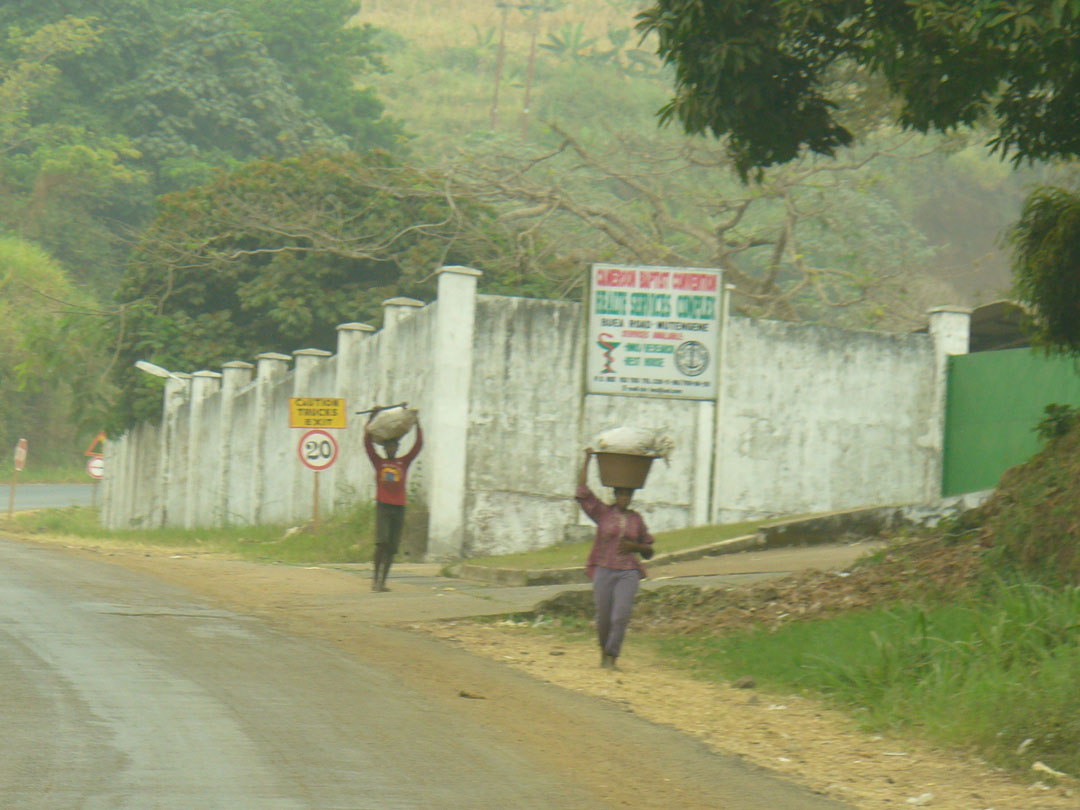 CDC Research facility Cameroon