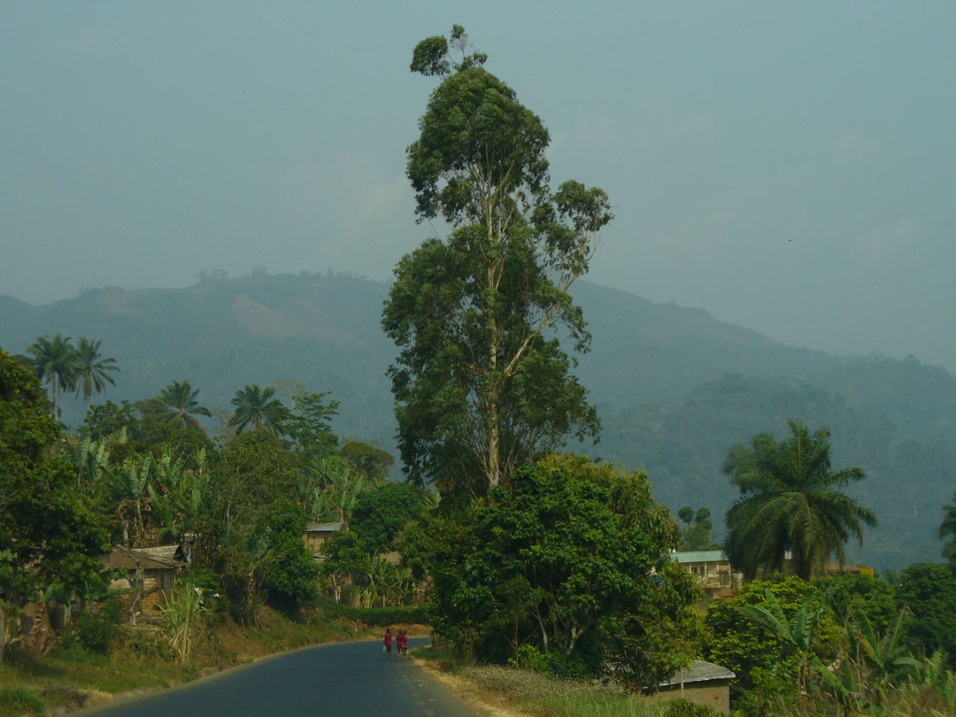 On the road to Bamenda