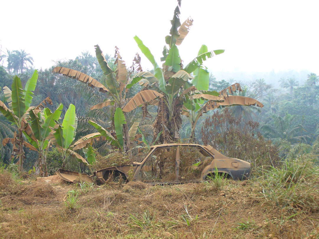 Cameroon jungle abandoned vehicle