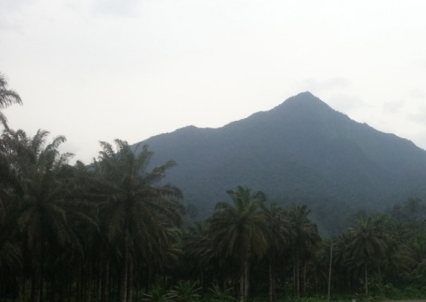 Mount Cameroon Wikipedia